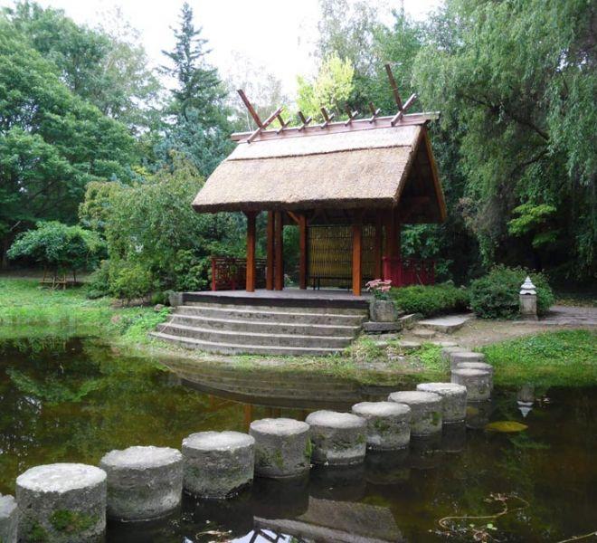 900-650-arboretum-mlynany-2-min